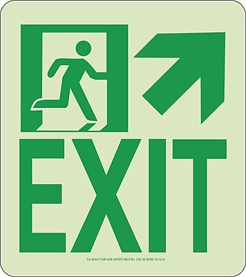 NYC Wall Mont Exit Sign, Up Right, 9X8, Rigid, 7550 Glow Brite, MEA Approved