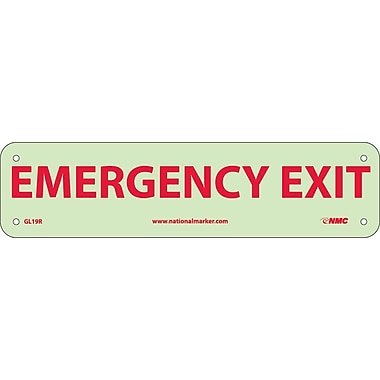 Emergency Exit, 3X12, Glow Rigid