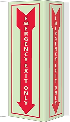 Visi, Emergency Exit Only, 16X8.75, Acrylicglow