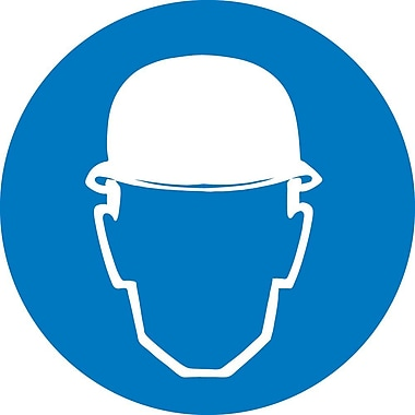 Label, Graphic for Wear Head Protection, 4