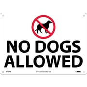 No Dogs Allowed, Graphic, 14X20, Rigid Plastic