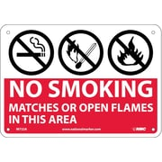 No Smoking Matches Or Open Flames In This Area, Graphics, 7X10, .040 Aluminum
