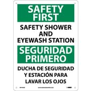 Safety First Safety Shower And Eyewash Station, Bilingual, 14X10, .040 Aluminum