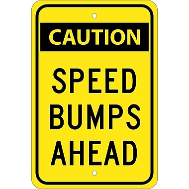 Caution Speed Bumps Ahead, 18