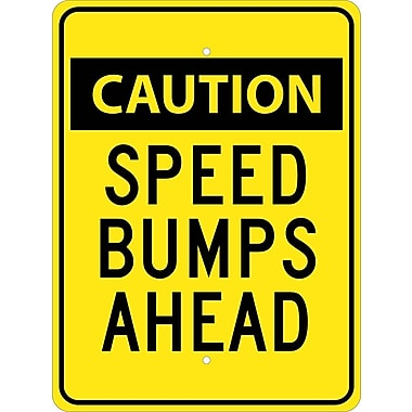 Caution Speed Bumps Ahead, 24