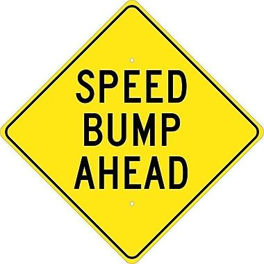 Speed Bump Ahead, 24