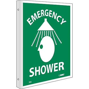 Emergency Shower, Flanged, 10