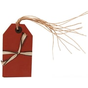 JAM Paper® Gift Tags with String, Medium, 2 3/8 x 4 1/4, Red Kraft, 6/pack (297525315)