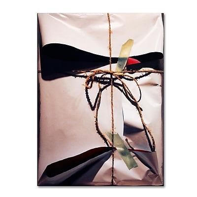 Trademark Fine Art 'White Wrap With Twine' 35