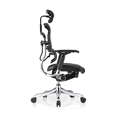 Eurotech Seating ME22ERGLT Ergo Elite Mesh High-Back Executive Chair with Adjustable Arms, Black