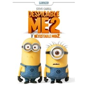 Despicable Me 2 (DVD)