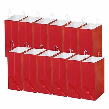 S&S® Laminated Large Gift Bags