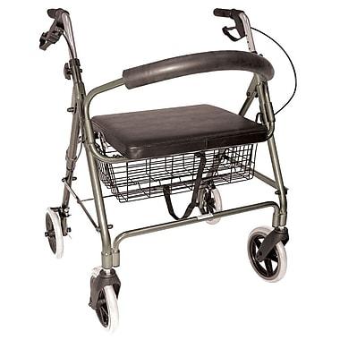 Briggs Healthcare Rollator Titanium