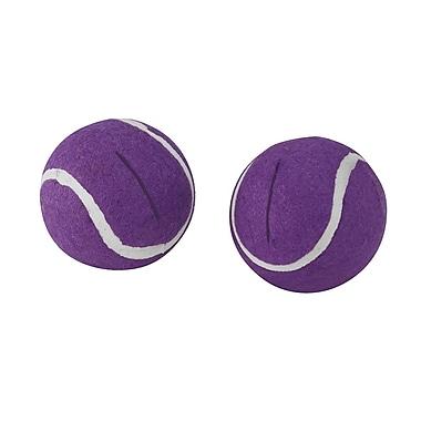 Briggs Healthcare Walkerballs Purple