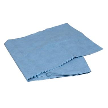 Briggs Healthcare Sterile Burn Sheet Blue