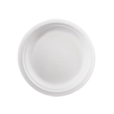 CKF Natural Pulp Fibre Luncheon Plate, 8.75