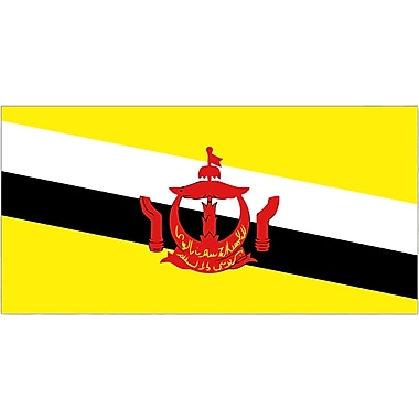 International Flag, Brunei, 4