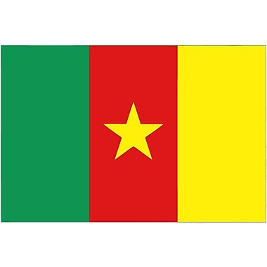International Flag - Cameroon