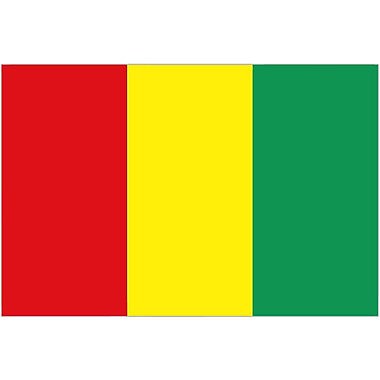 International Flag - Guinea