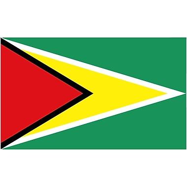 International Flag, Guyana, 36