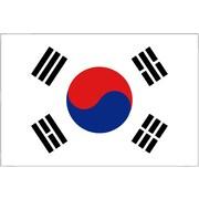 International Flag - South Korea