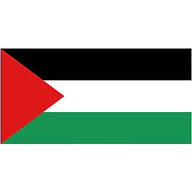 International Flag, Palestine, 4