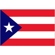 International Flag - Puerto Rico