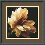 "Amanti Art Charles Britt ""Timeless Grace I"" Framed Print Art, 15.88"" x 15.88"""