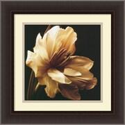 "Amanti Art Charles Britt ""Timeless Grace I"" Framed Print Art, 17.88"" x 17.88"""