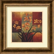 "Amanti Art Jill Deveraux ""Orange Orchid"" Framed Art, 16 3/4"" x 16 3/4"""
