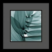"Amanti Art Steven N. Meyers ""Lily Leaves"" Framed Print Art, 13 1/4"" x 13 1/4"""