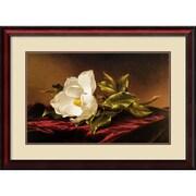 "Amanti Art Martin Johnson Heade ""Magnolia Grandiflora"" Framed Print Art, 24"" x 33"""
