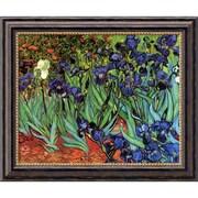 "Amanti Art Vincent Van Gogh ""Irises In The Garden"" Framed Art, 20"" x 24"""
