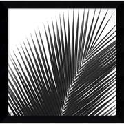 """Amanti Art Jamie Kingham """"Palms 14 (Detail)"""" Framed Print Art, 12.75"""" x 12.88"""""""