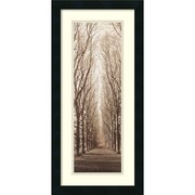 "Amanti Art Alan Blaustein ""Poplar Trees"" Framed Print Art, 26"" x 12.38"""