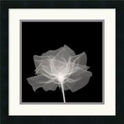 "Amanti Art ""Layered Veil"" Framed Print Art, 18"" x 18"""