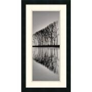 "Amanti Art ""Reflections"" Framed Print Art, 26"" x 14"""