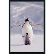 "Amanti Art  ""Penguin and Chick"" Framed Animal Art, 37.38"" x 25.38"""
