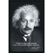 "Amanti Art ""Einstein Curiosity"" Framed Print Art, 37.38"" x 25.38"""