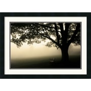 "Amanti Art Andy Magee ""Shenandoah"" Framed Print Art, 19"" x 26"""