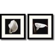 "Amanti Art  ""Calla"" Framed Print Art Set, 13.12"" x 13.12"""