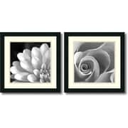 "Amanti Art  ""Pretty Petals"" Framed Print Art Set, 18"" x 18"""