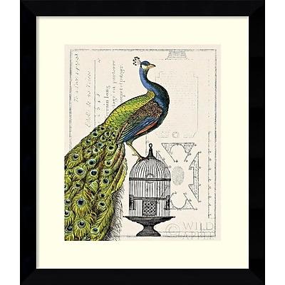 """""Amanti Art Sue Schlabach """"""""Peacock Birdcage I"""""""" Framed Animal Art, 28.62"""""""" x 24.62"""""""""""""" 967531"