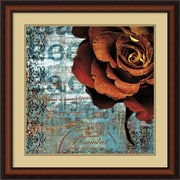 "Amanti Art Christina Lazar Schuler ""Graffiti Rose"" Framed Print Art, 25"" x 25"""