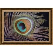 "Amanti Art  ""Sumptuous"" Framed Animal Art, 19.88"" x 28"""