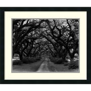 "Amanti Art Monte Nagler ""Path in the Oaks #2, Louisiana"" Framed Print Art, 22"" x 26"""