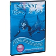 S&S® Dolphins and The Sea DVD
