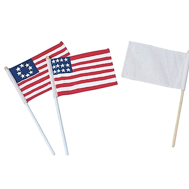 S&S CO168 Color-Me Multicolor Blank Flags and Dowels, 6