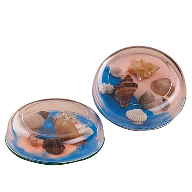 S&S® Seashell Paperweight Craft Kit, 12/Pack