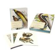 Extraordinary Birds Paul Sweet Paperback